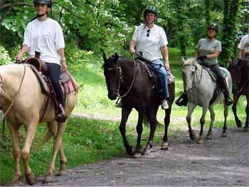 horseback riding on the Creeper Trail